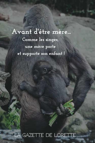 Une mère porte et supporte à vie ses enfants. Même combat que les singes !
