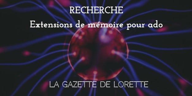 La Gazette de Lorette croque l'inconscience des ados